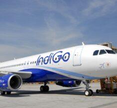 "IndiGo's new brand campaign for Malaysia market- ""India Calling"""